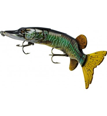 Lucio Fish Action