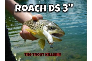 Real Roach 3D Fish Action